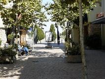 fidenzatree
