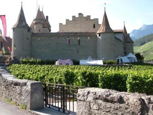 Винодельни в Швейцарии