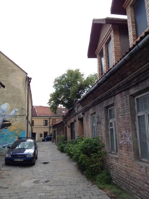 Земля в Литве
