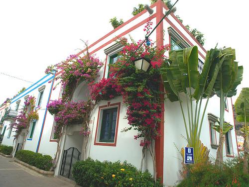 Недвижимость на Канарских островах